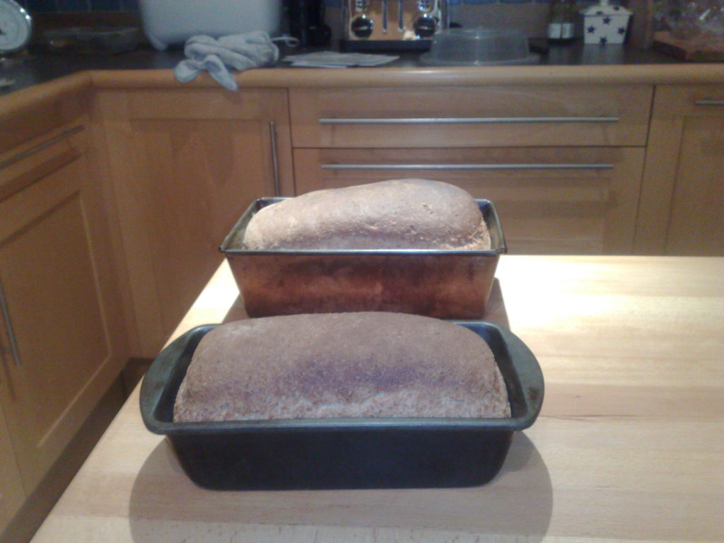 Two loaves in tins, just out of the overn