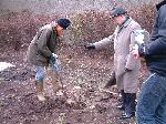 planting1 1